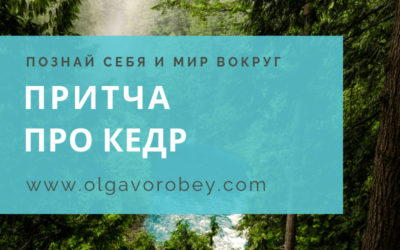 """Притча """"Про кедр"""""""